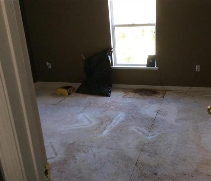 Mold Damage in Lakeland, FL  Before