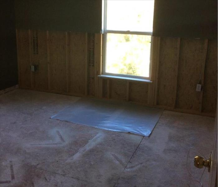 Mold Damage in Lakeland, FL  After