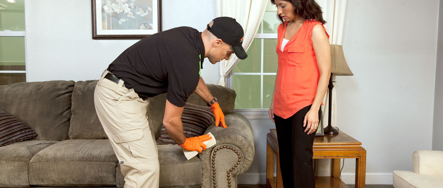 Haines City, FL carpet upholstery cleaning