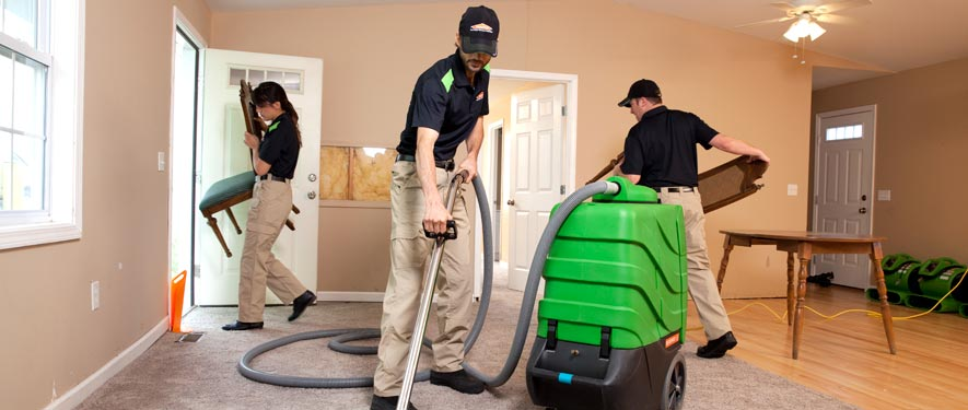 Haines City, FL cleaning services