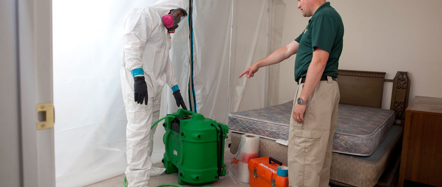 Haines City, FL mold removal process